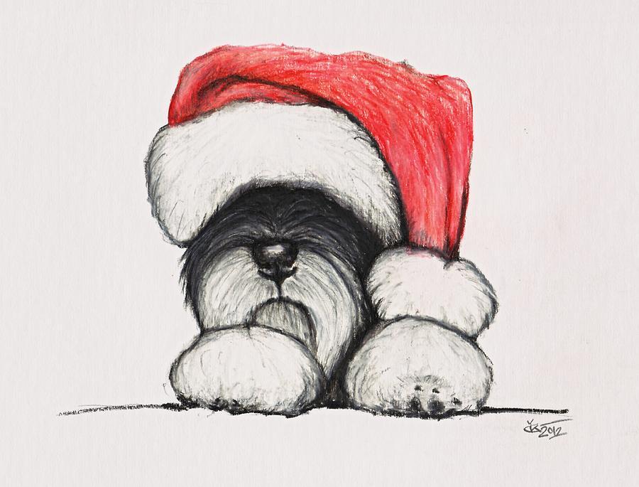 Santa Schnauzer Drawing by Katerina A Cechova