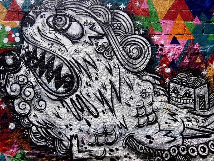 Graffiti Photograph - Sao Paulo Graffiti Vii by Julie Niemela