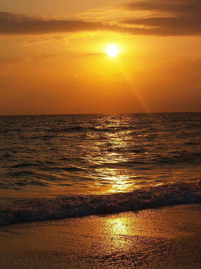 Nature Photograph - Sarasota Sunset Florida by Athala Carole Bruckner