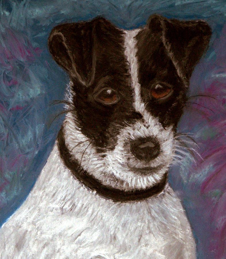 Terrier Pastel - Sassy 2 Pastel by Antonia Citrino