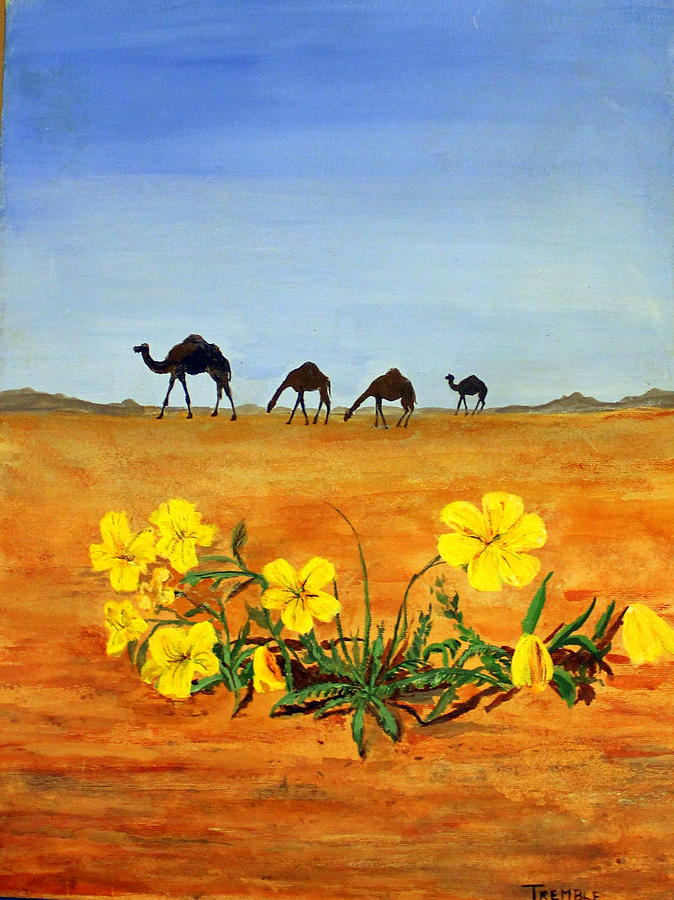 Saudi Arabia Painting - Saudi Arabian Desert by William Tremble
