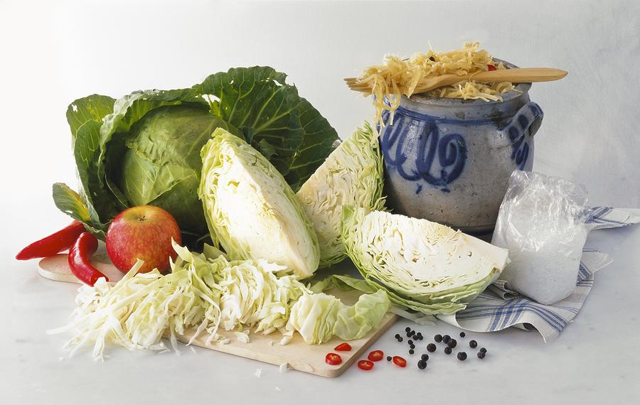 Biology Photograph - Sauerkraut Ingredients by Science Photo Library