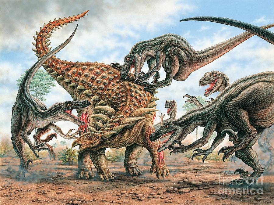 Attack Painting - Sauropelta and Utahraptors by Phil Wilson