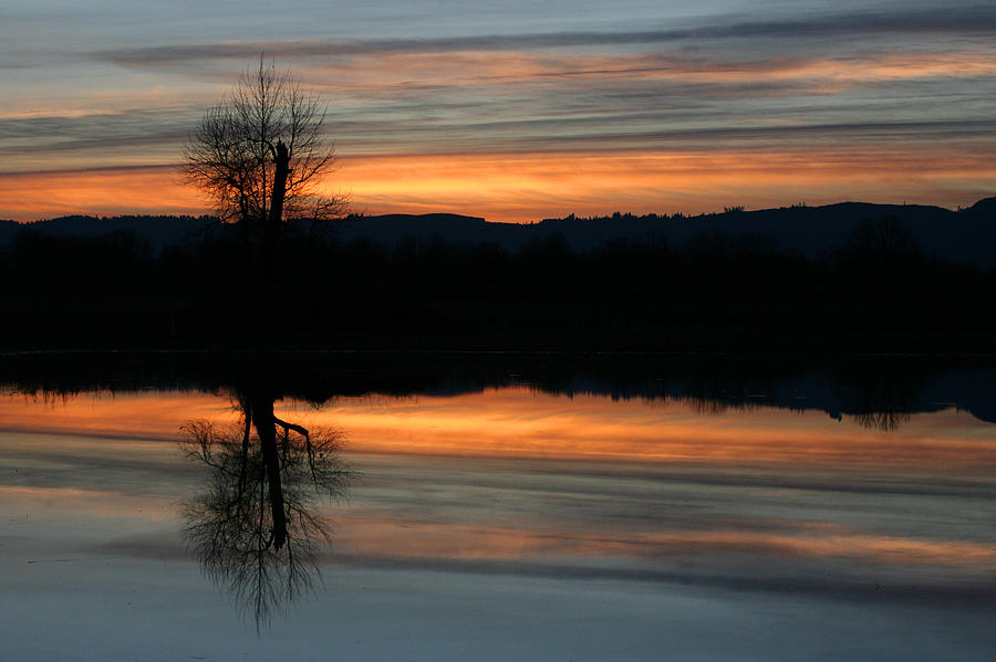 Sauvie Island by Steve Parr