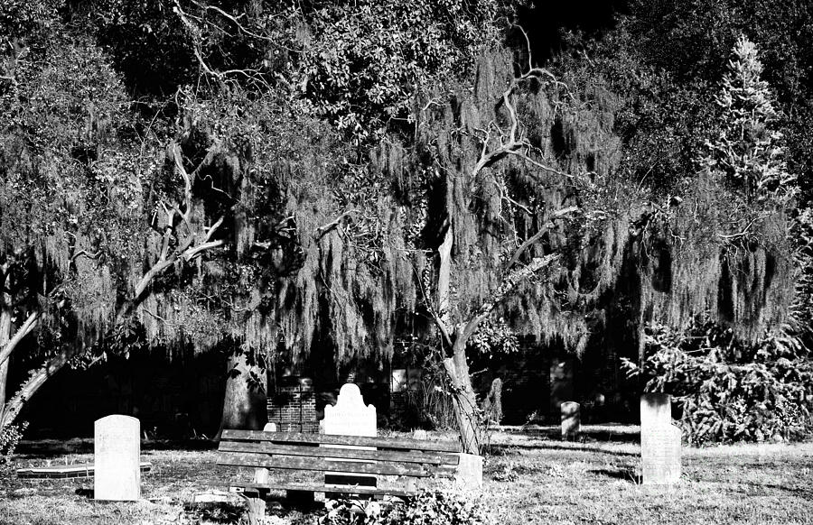 Rip Photograph - Savannah Resting Place by John Rizzuto