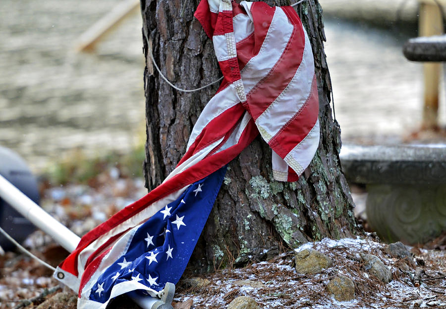 Flag Photograph - Save The Flag by Susan Leggett