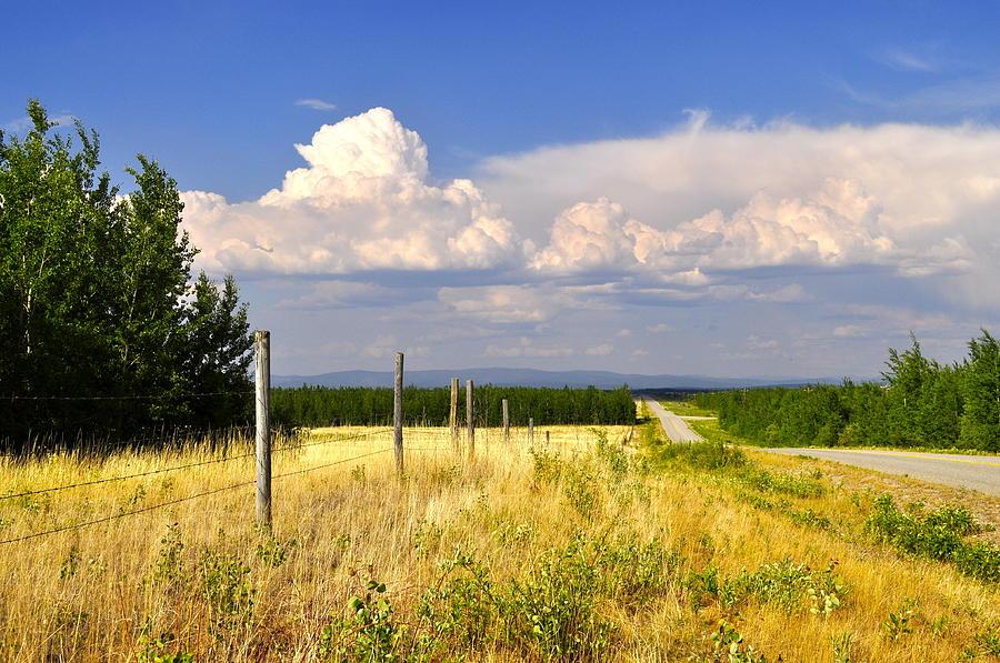 Landscape Photograph - Sawmill Creek Road by Cathy Mahnke
