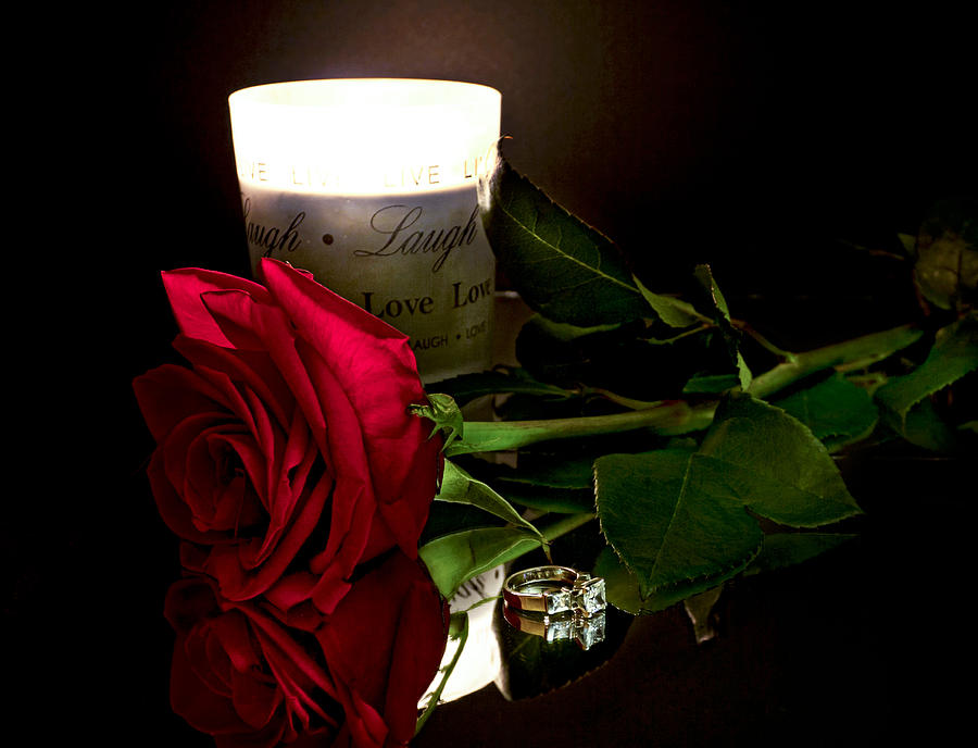 Red Rose Photograph - Say You Will by Peter Chilelli