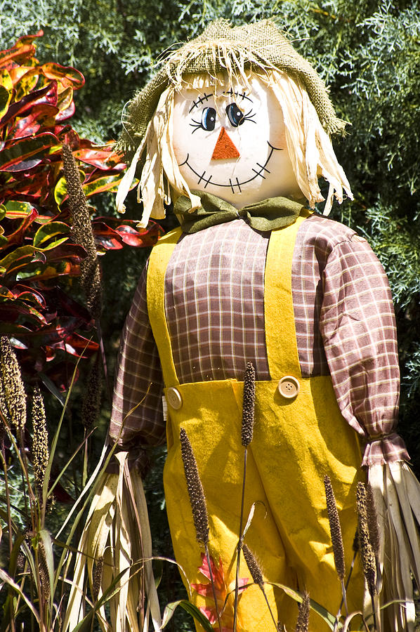 Scarecrow Photograph - Scare Crow by Carolyn Marshall