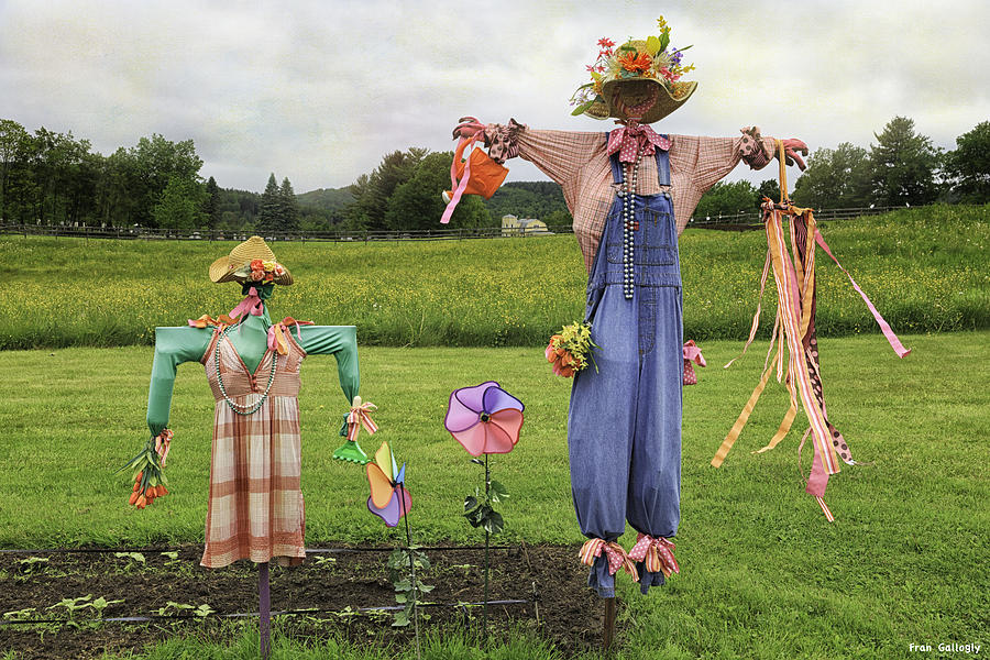 Scarecrows Photograph - Scarecrows by Fran Gallogly