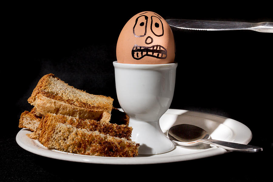 Egg Photograph - Scared Egg by Gary Gillette