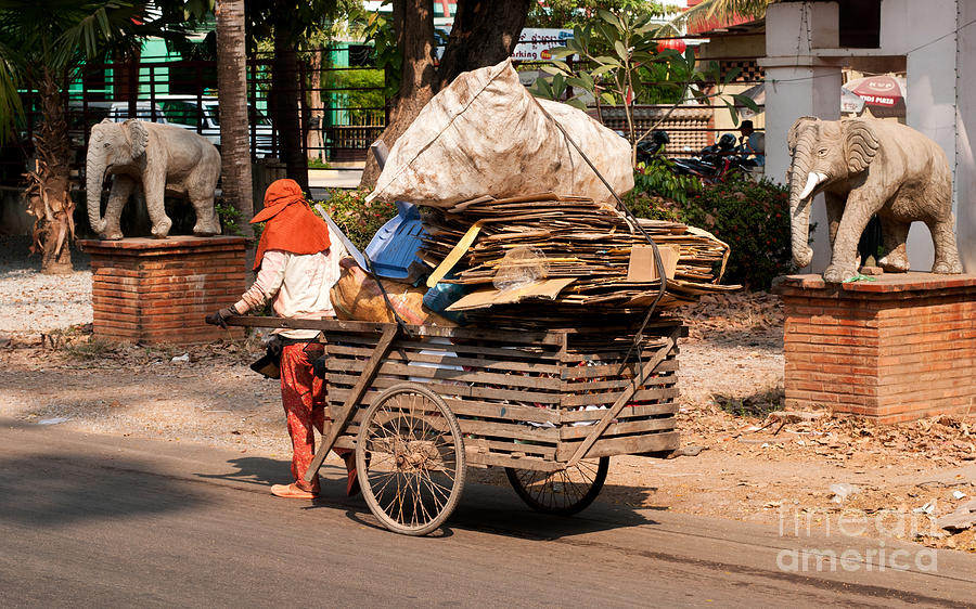 Cambodia Photograph - Scavenger by Rick Piper Photography