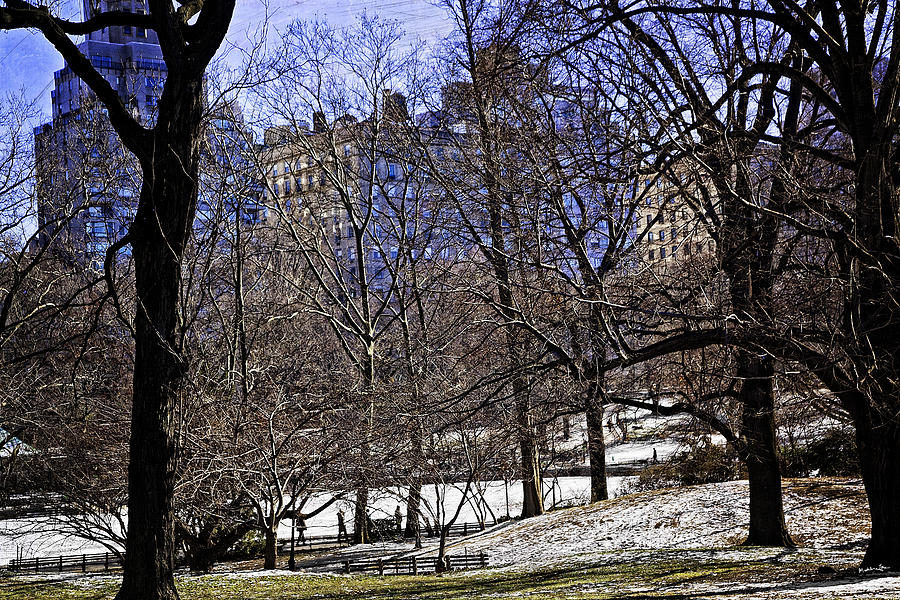 New York City Photograph - Scene From Central Park - Nyc by Madeline Ellis