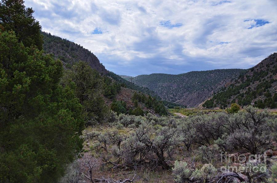 Scenic Utah by Donna Greene