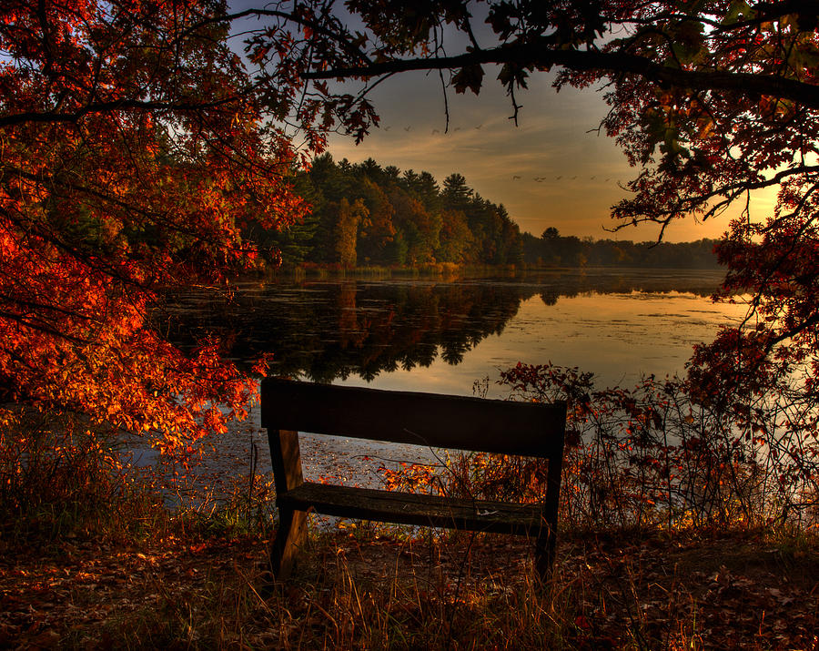 Fall Colors Photograph - Scenic View by Thomas Young