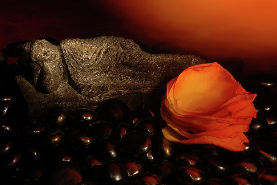 Buddha Photograph - Scented Dreams by Phyllis Clarke