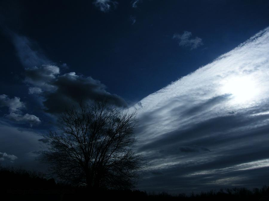 Schatten Photograph - Schattenlicht - Shadowlight by Mimulux patricia No