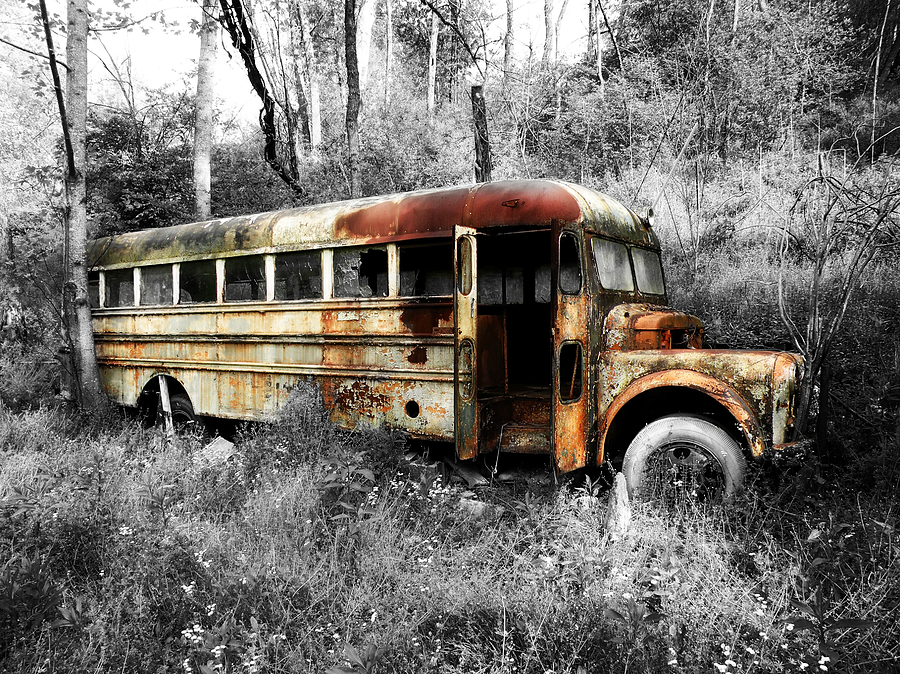 School Bus Photograph - School Bus by Steven Michael