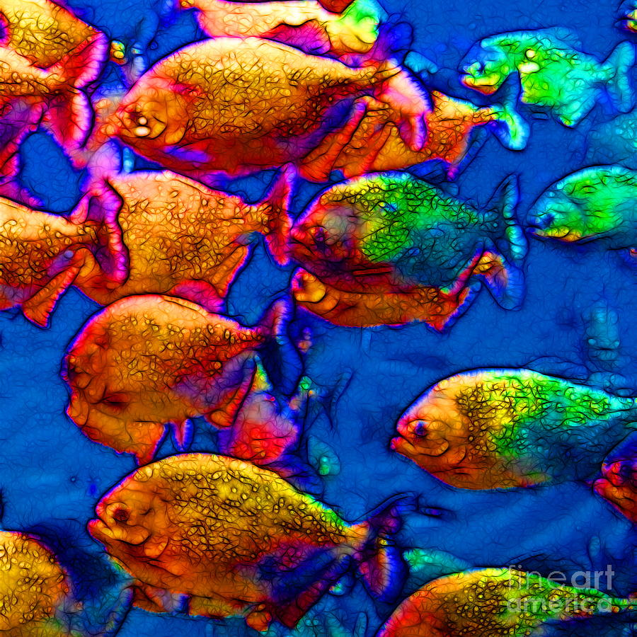 Florida Photograph - School Of Piranha V3 - Square by Wingsdomain Art and Photography
