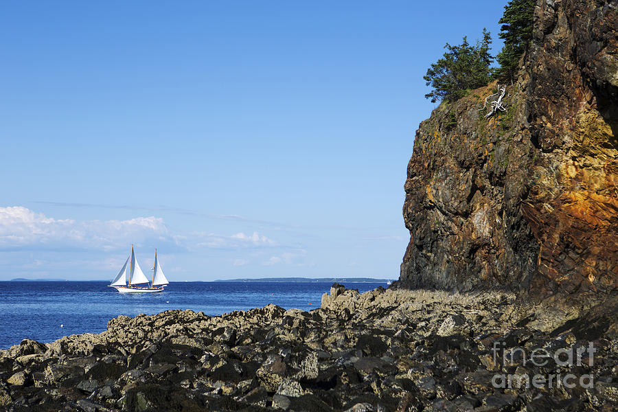 Schooner Photograph - Schooner Sailing In The Bay by Diane Diederich