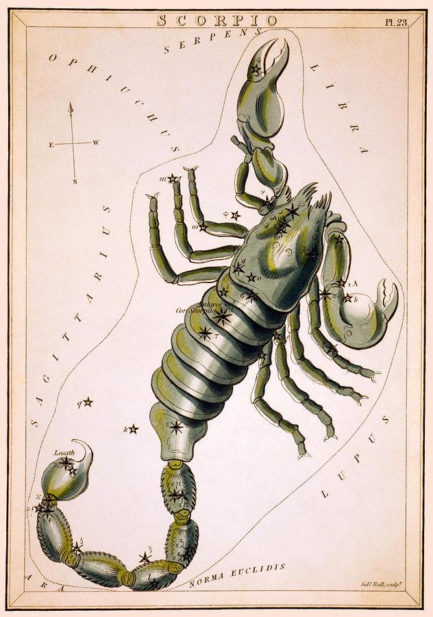 Scorpio Photograph - Scorpio Constellation  1825 by Daniel Hagerman