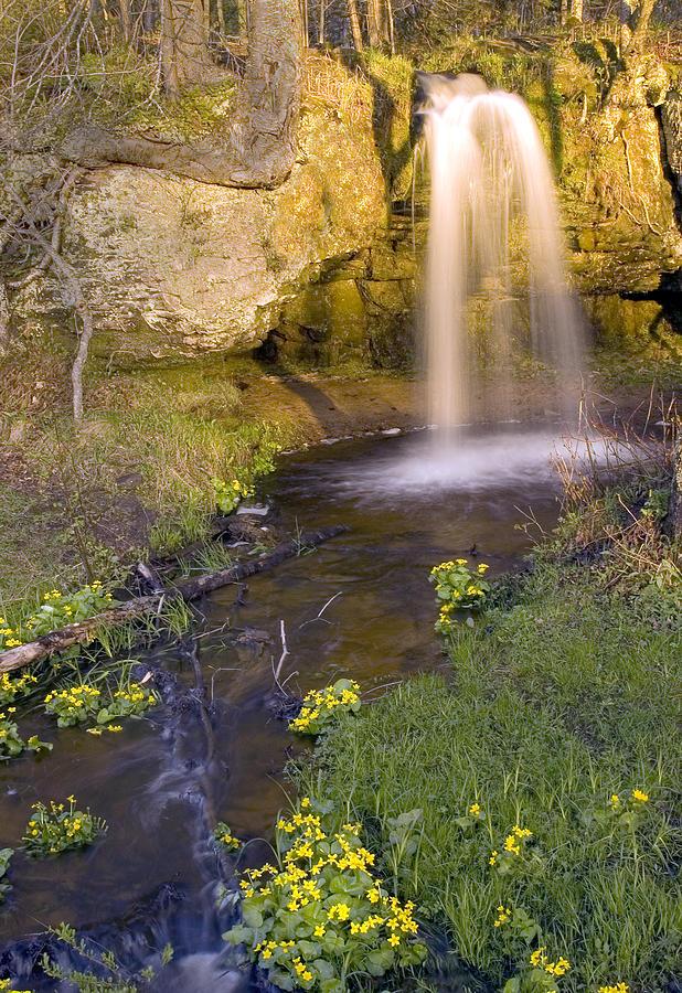 Scott Falls by Pristine Images