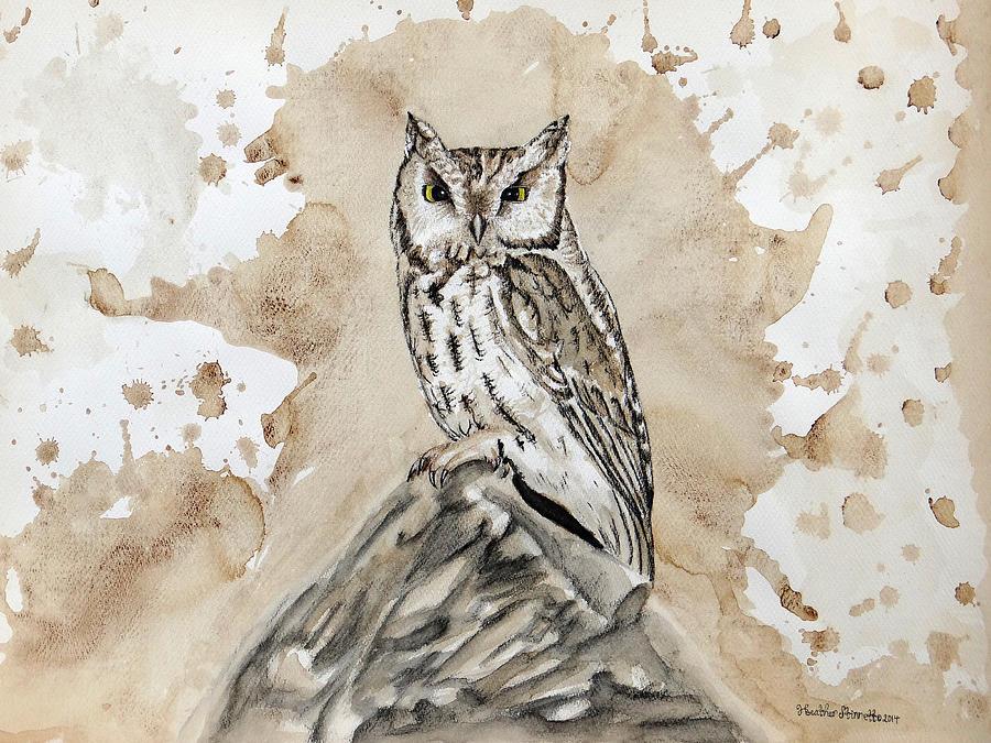 Screech Owl Mixed Media - Screech Owl by Heather Stinnett