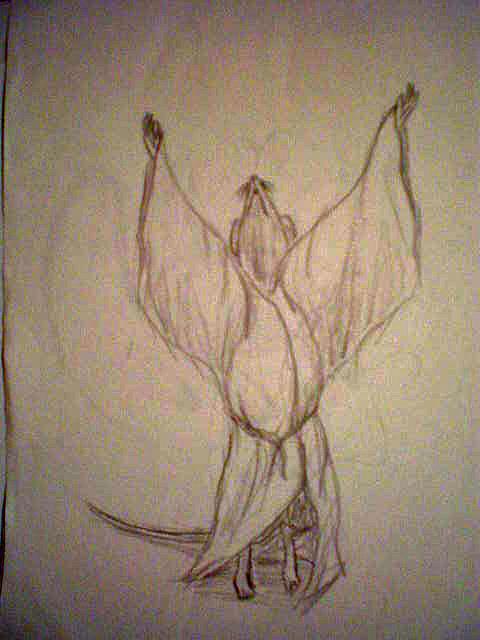 Rat Drawing - Scribble Nim by Steve Spagnola