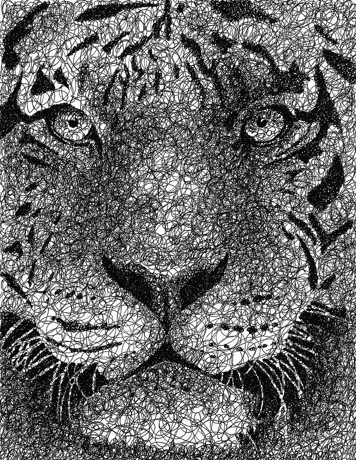 Scribble Drawing Art : Scribble tiger drawing by nathan shegrud