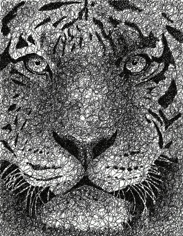 Scribble Drawing : Scribble tiger drawing by nathan shegrud