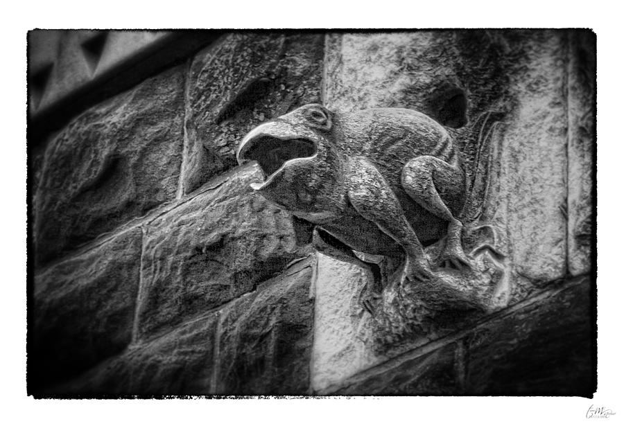 Frog Photograph - Sculpted Frog - Art Unexpected by Tom Mc Nemar