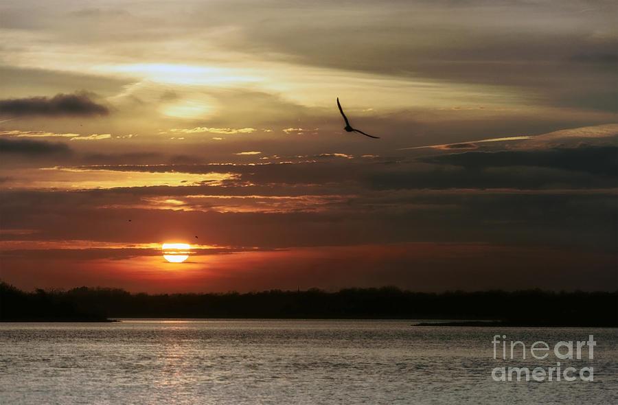 Sea Bright Photograph - Sea Bright Sunset by Debra Fedchin