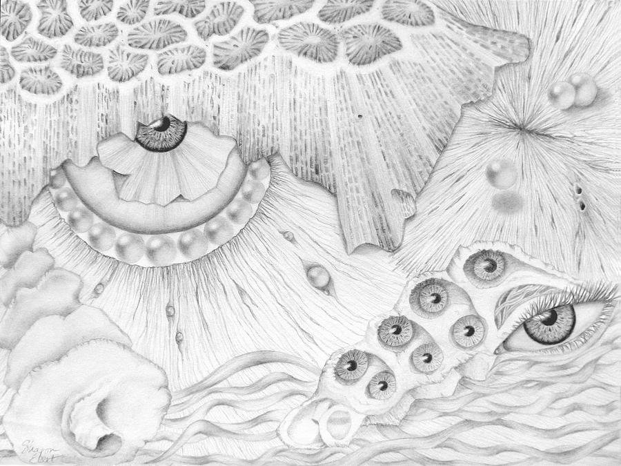 Graphite Pencil Painting - Sea Deep In Wisdom by Sharon Ebert