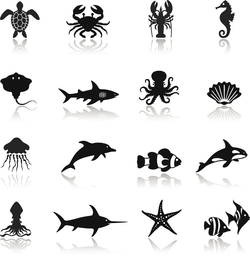 Sea Life Icon Set Drawing by AlonzoDesign