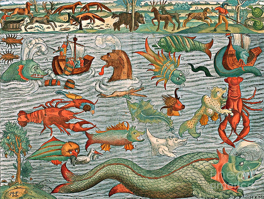 History Photograph - Sea Monsters 1544 by Photo Researchers