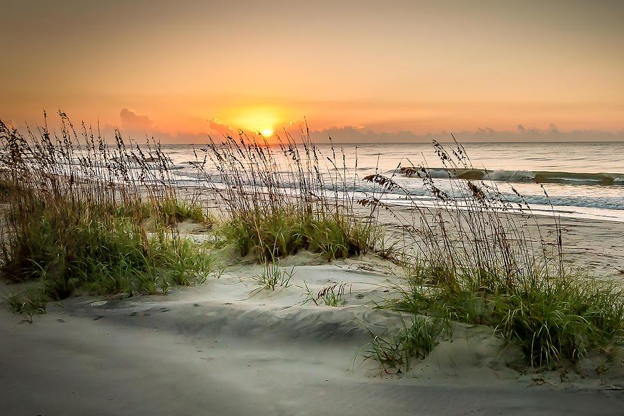Beach Digital Art - Sea Oat Islands by Steve DuPree