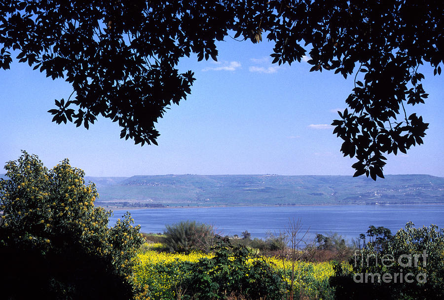 Sea Of Galilee Photograph - Sea Of Galilee From Mount Of The Beatitudes by Thomas R Fletcher