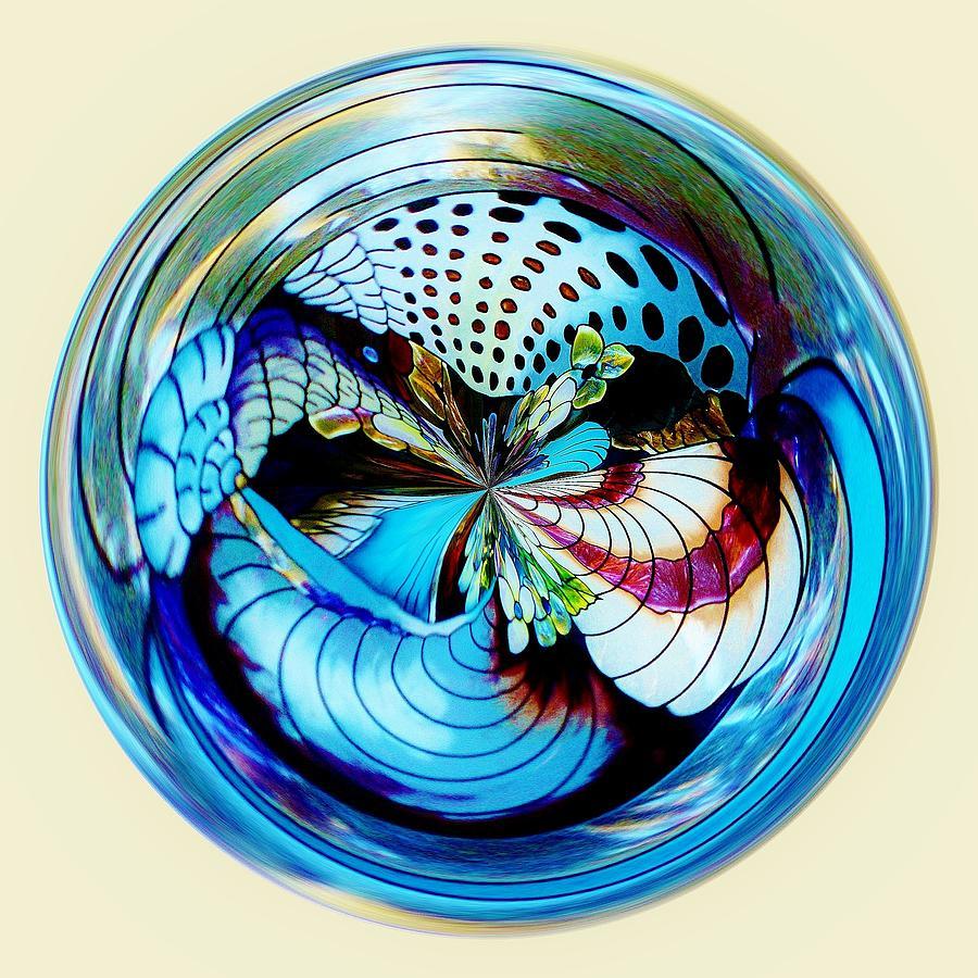 Orb Photograph - Sea Shell Orb by Paulette Thomas