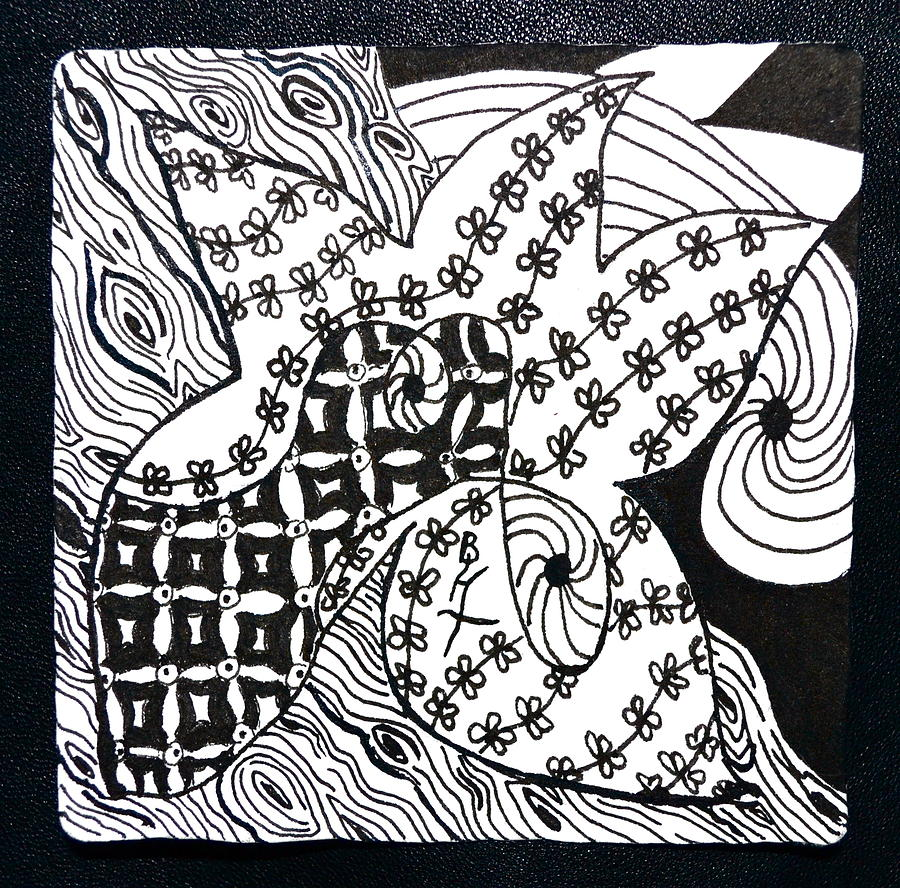 Sea Star Drawing - Sea Star by Beverley Harper Tinsley