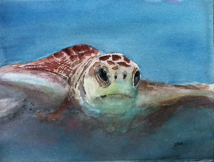 Animals Painting - Sea Turtle  by Stephanie Sodel