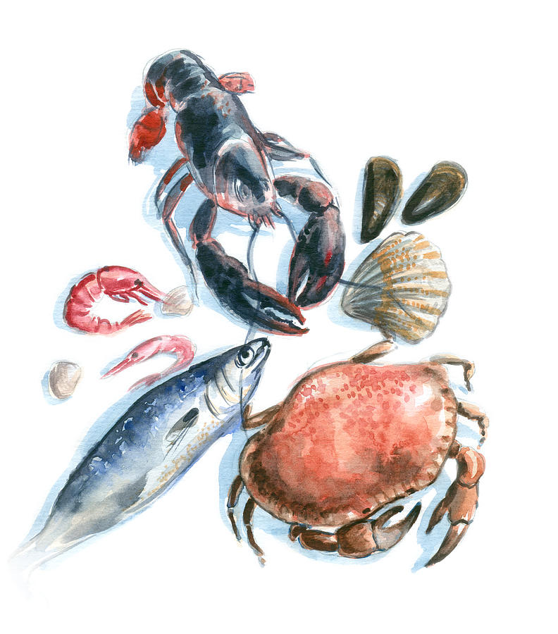Watercolor Painting Digital Art - Seafood Watercolor by Axllll