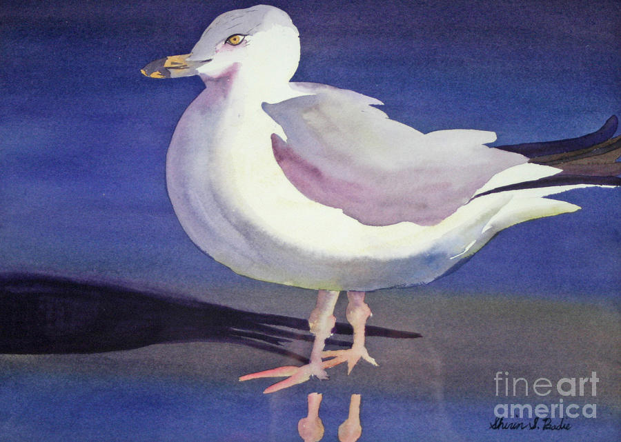 Nature Painting - Seagull by Shirin Shahram Badie