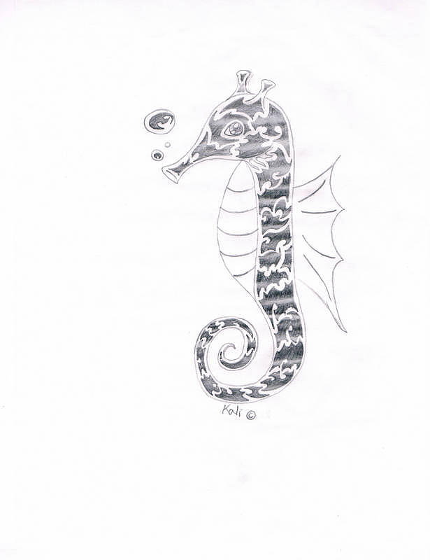 Pencil Drawing - Seahorse  by Kali Kardsbykali