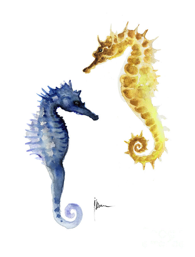 Seahorse Painting   Seahorse Wall Decor Art Print Watercolor Painting By  Joanna Szmerdt