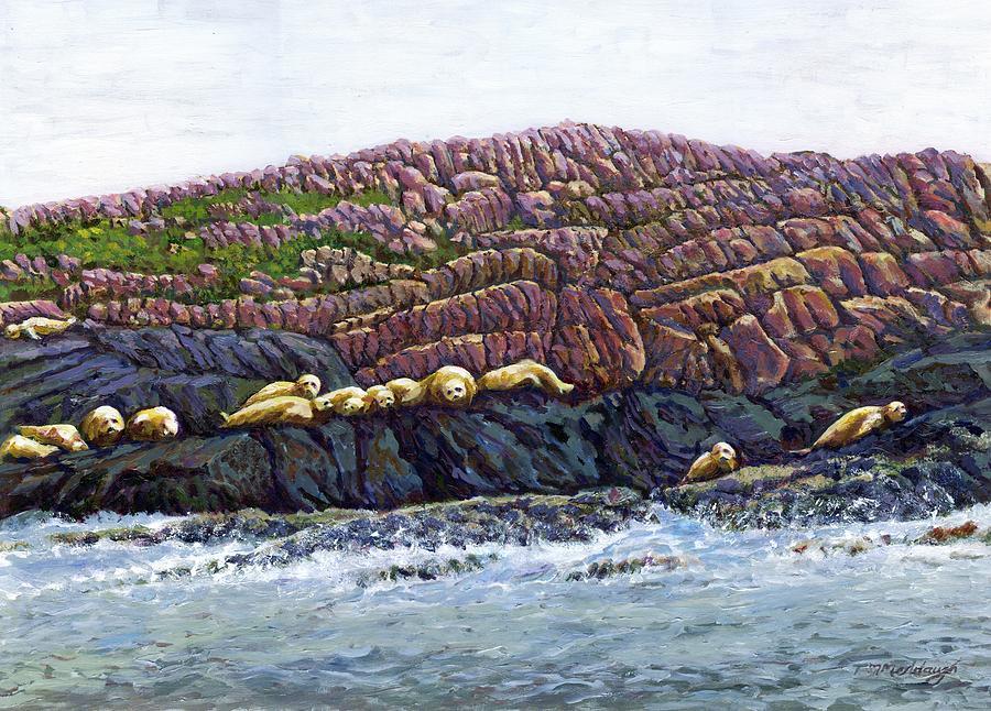 Seals Painting - Seal Island by Thomas Michael Meddaugh