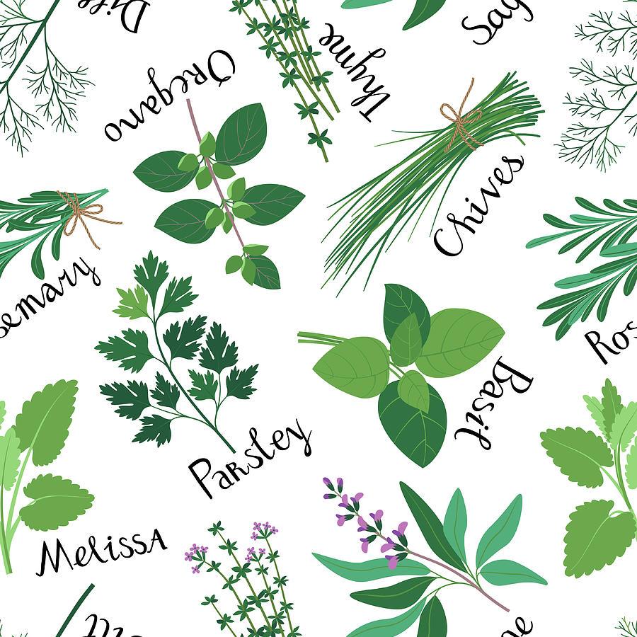 Seamless Pattern Fresh Herbs Digital Art by Innabodrova