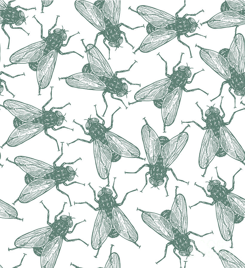 Engraving Digital Art - Seamless Vector Flies Pattern In by Lestyan