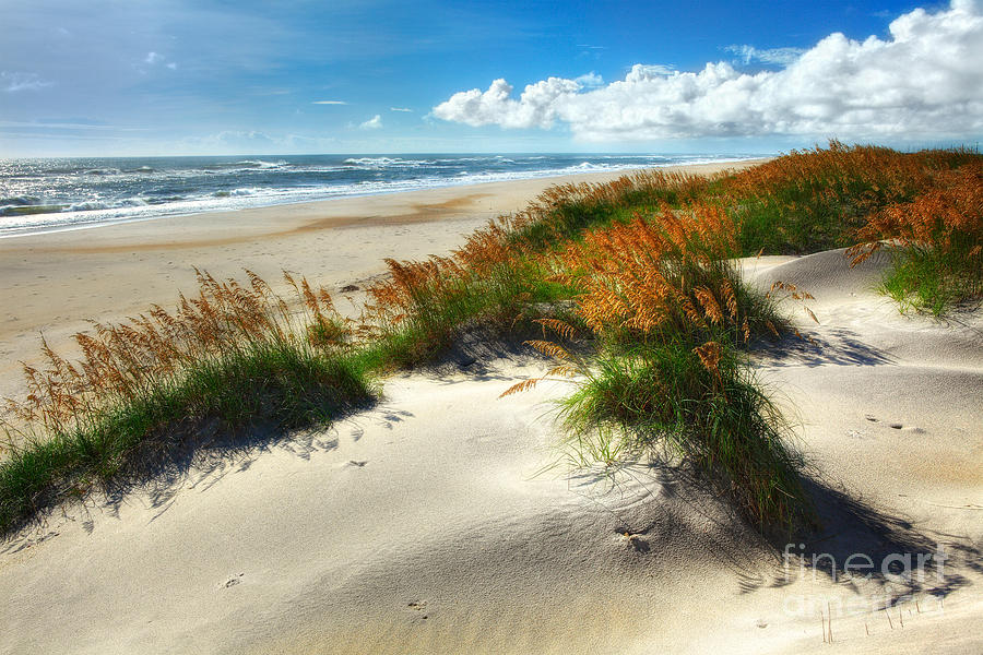 North Carolina Photograph - Seaside Serenity I - Outer Banks by Dan Carmichael