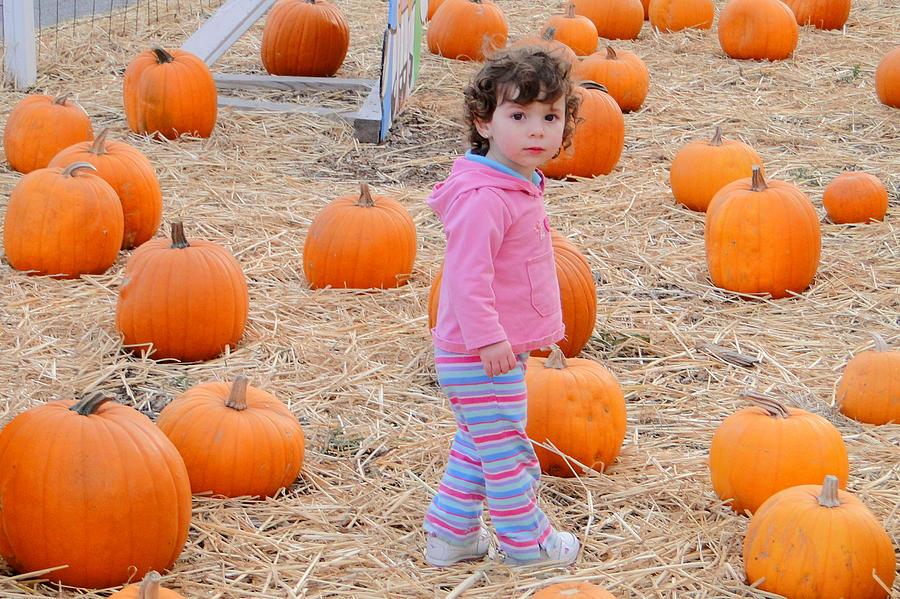 Pumpkins Photograph - Seasoning by Nick David