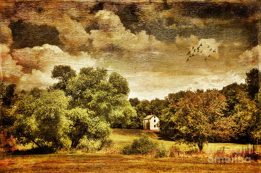 Landscape Photograph - Seasons Change by Lois Bryan